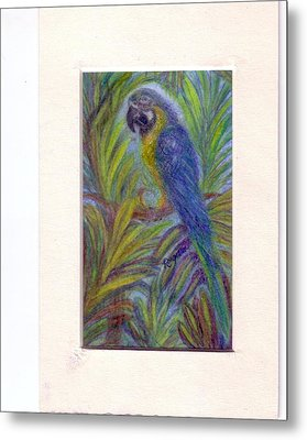 Colorful Conversationalist Metal Print by Regina Taormino