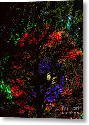 Colorful Tree Metal Print by James BO  Insogna