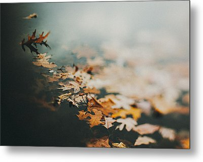 Colors Of Fall Metal Print by Tracy  Jade