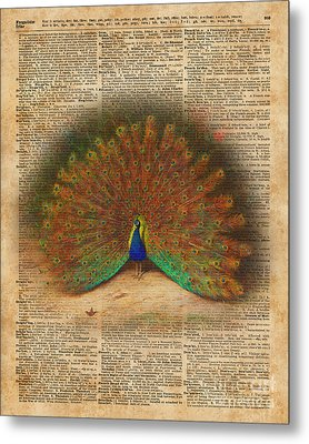 Colourful Beautiful Peacock Vintage Dictionary Art Metal Print by Jacob Kuch