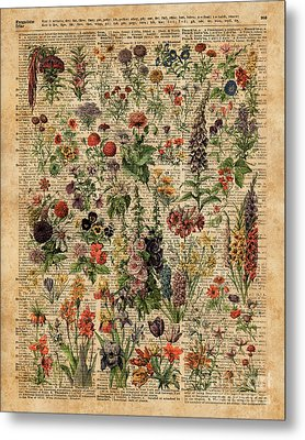 Colourful Meadow Flowers Over Vintage Dictionary Book Page  Metal Print by Jacob Kuch