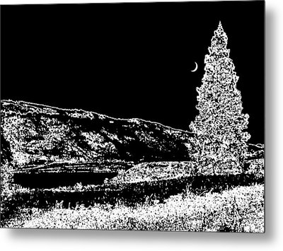 Cool Winter Night Metal Print by Will Borden