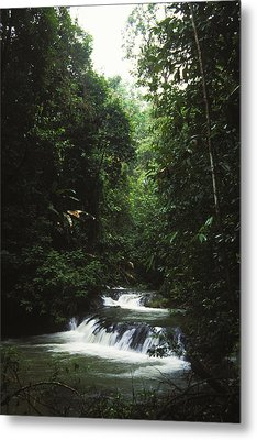 Costa Rica Waterfall In The Carocavado Metal Print by James Forte