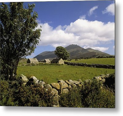 Cottages On A Farm Near The Mourne Metal Print by The Irish Image Collection