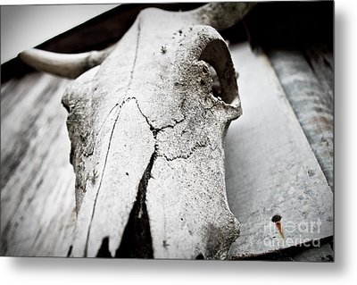 Country Afterlife Metal Print by Pixel Perfect by Michael Moore