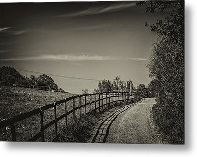 Country Path Metal Print by Martin Newman