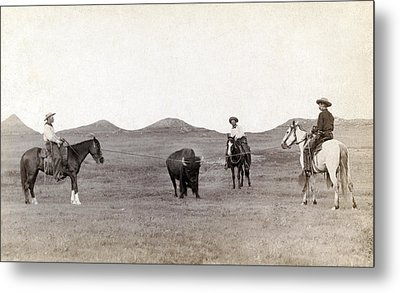Cowboys, Roping A Buffalo Metal Print by Everett