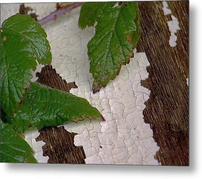 Cracked Up Metal Print by Angi Parks
