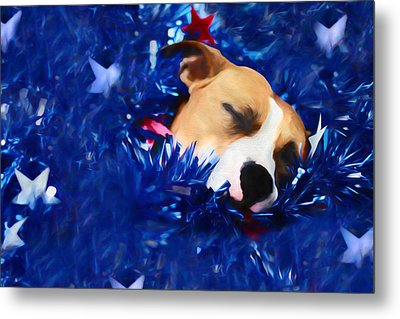 Cradled By A Blanket Of Stars And Stripes Metal Print by Shelley Neff