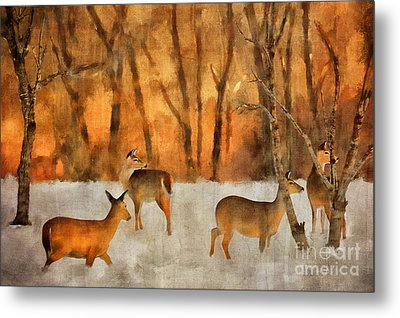 Creatures Of A Winter Sunset Metal Print by Lois Bryan