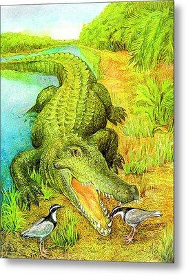 Crocodile Metal Print by Natalie Berman