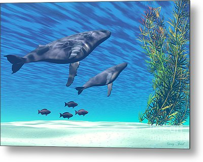 Crystal Clear Metal Print by Corey Ford