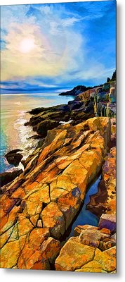 Cutler Coast Lichen Metal Print by Bill Caldwell -        ABeautifulSky Photography