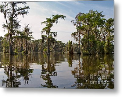 Cypress Trees And Spanish Moss In Lake Martin Metal Print by Louise Heusinkveld