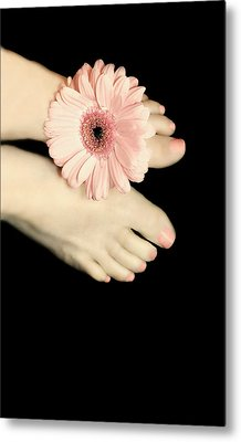 Daisy Toes Metal Print by Diana Angstadt
