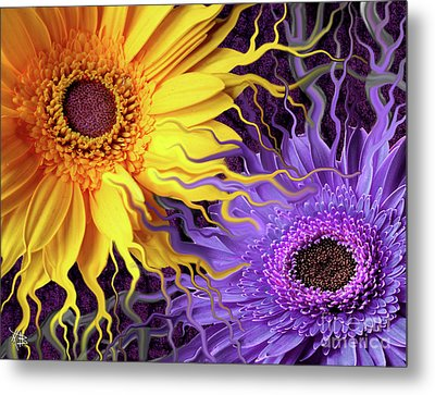 Daisy Yin Daisy Yang Metal Print by Christopher Beikmann