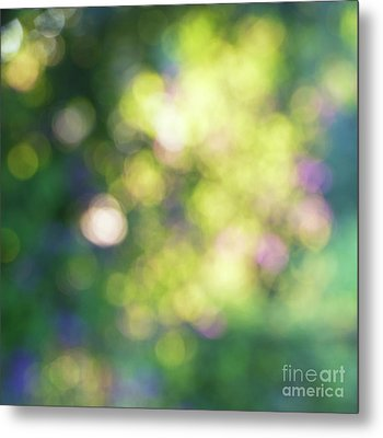 Dance Of Dappled Light Metal Print by Tim Gainey