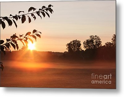 Dawn Of A Brand New Day  Metal Print by Cathy  Beharriell
