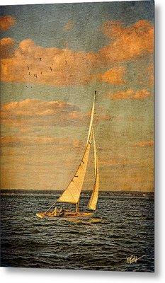 Day Sail Metal Print by Michael Petrizzo