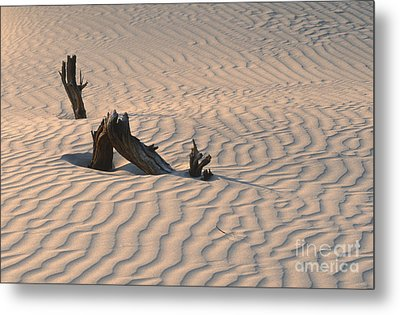 Death Valley Morning Metal Print by Sandra Bronstein
