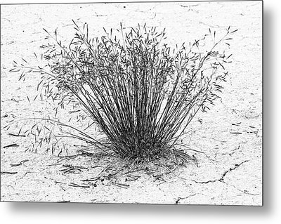 Death Valley National Park - Hot - Dry - Beautiful Metal Print by Christine Till