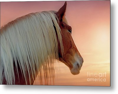 Deep In Thought Metal Print by Tamyra Ayles
