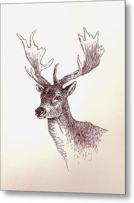 Deer In Ink Metal Print by Michael Vigliotti