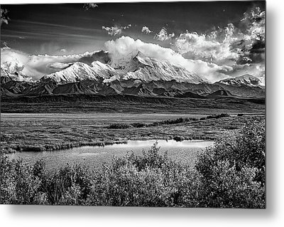 Denali, The High One In Black And White Metal Print by Rick Berk