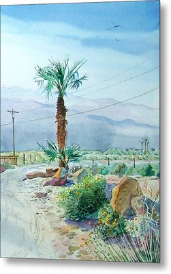 Desert Palm Metal Print by John Norman Stewart