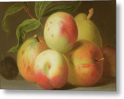 Detail Of Apples On A Shelf Metal Print by Jakob Bogdany