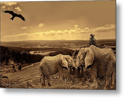 Dignified Rank Metal Print by Lourry Legarde