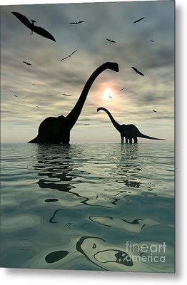 Diplodocus Dinosaurs Bathe In A Large Metal Print by Mark Stevenson