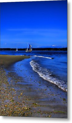 Discovery Park North Beach Metal Print by David Patterson