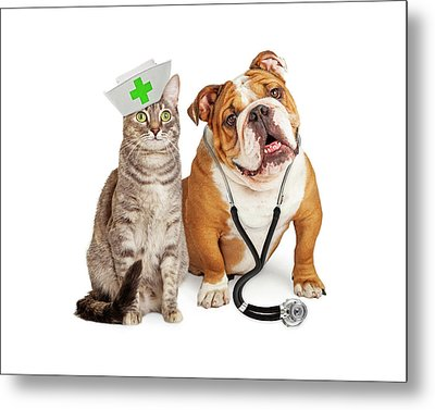 Dog And Cat Veterinarian And Nurse Metal Print by Susan Schmitz