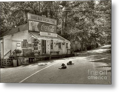 Dog Day Afternoon Sepia Tone Metal Print by Mel Steinhauer