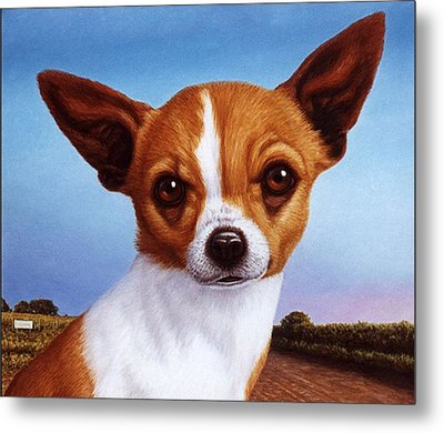 Dog-nature 3 Metal Print by James W Johnson