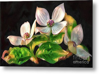 Dogwood Blossoms On A Branch Metal Print by Lois Bryan