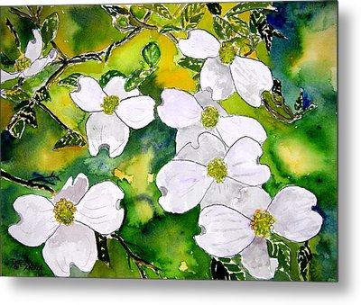 Dogwood Tree Flowers Metal Print by Derek Mccrea