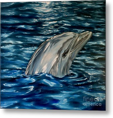 Dolphin Curiosity Oil Painting Metal Print by Avril Brand