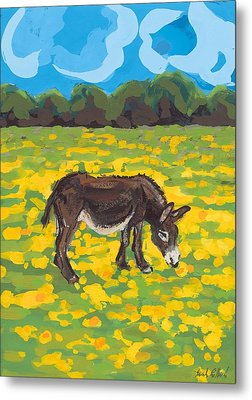 Donkey And Buttercup Field Metal Print by Sarah Gillard