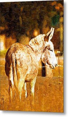 Donkey Metal Print by Paul Bartoszek