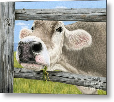 Don't Fence Me In Metal Print by Sarah Batalka