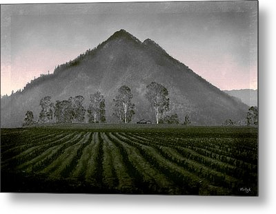 Down From The Mountain Metal Print by Holly Kempe