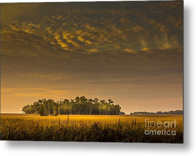 Dream Land Metal Print by Marvin Spates