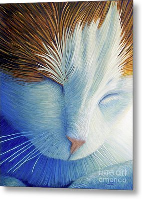 Dream Within A Dream Metal Print by Brian  Commerford