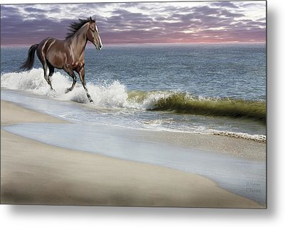 Dreamer On The Beach Metal Print by Barbara Hymer