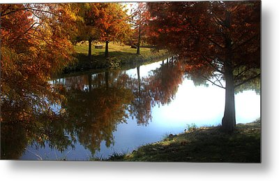 Duck Pond In The Fall Metal Print by Rebecca Lynn Roby