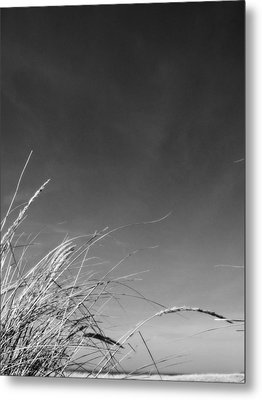 Dune Grass With Sky Metal Print by Michelle Calkins