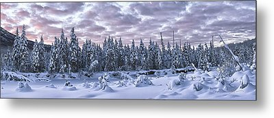 Eagle River Treeline Metal Print by Ed Boudreau