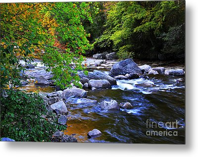 Early Autumn Along Williams River Metal Print by Thomas R Fletcher